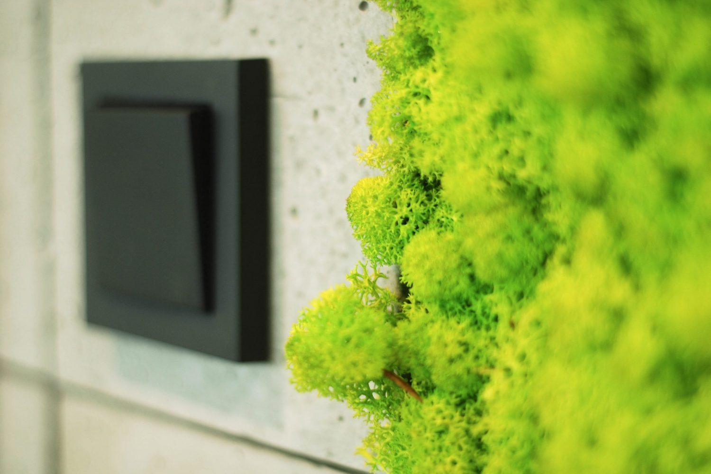 11 office Interior detail moss profilo verde